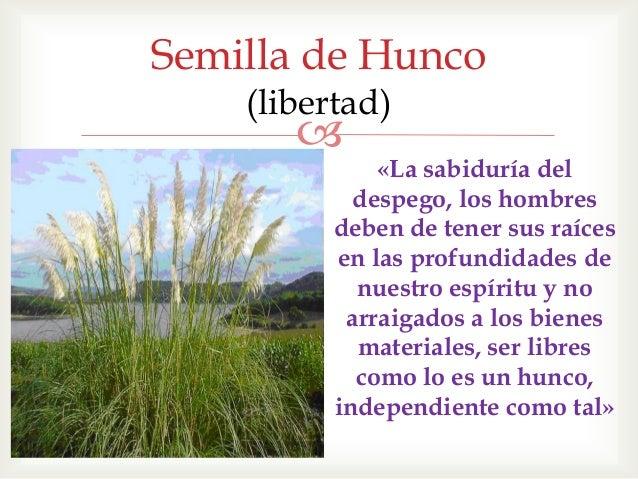 Hunco