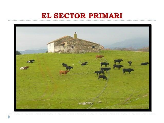 EL SECTOR PRIMARI