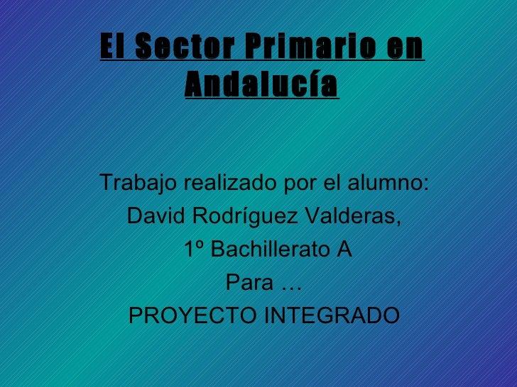 El Sector Primario en Andalucía Trabajo realizado por el alumno: David Rodríguez Valderas, 1º Bachillerato A Para … PROYEC...