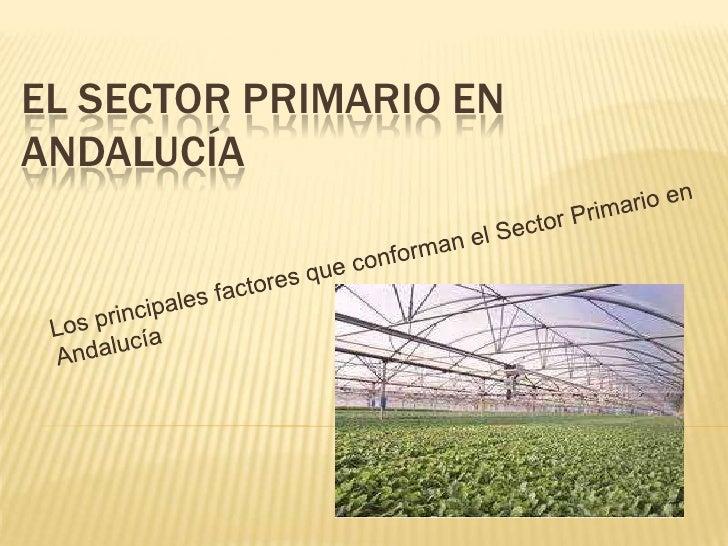 EL SECTOR PRIMARIO ENANDALUCÍA