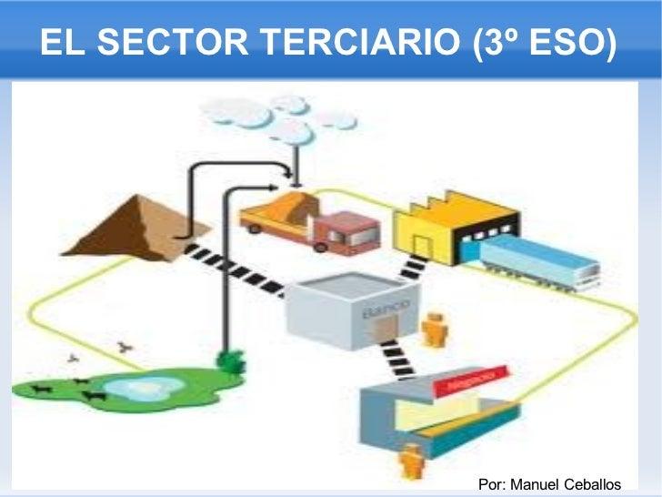 EL SECTOR TERCIARIO (3º ESO) Por: Manuel Ceballos