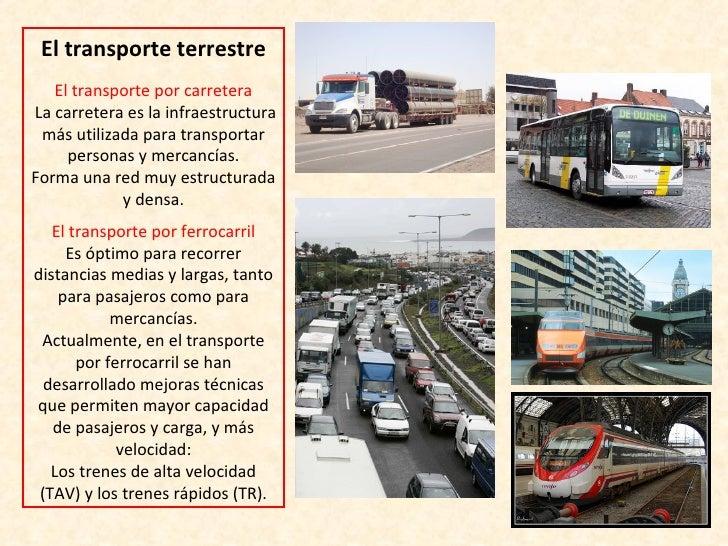 El Sector Terciario El Comercio Y Los Transportes