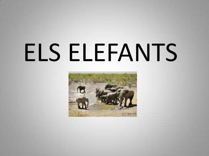 ELS ELEFANTS<br />