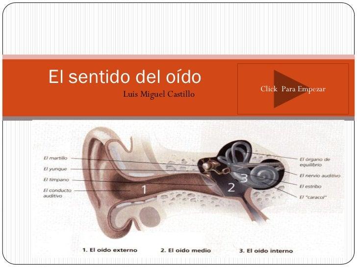 El sentido del oído             Click Para Empezar         Luis Miguel Castillo