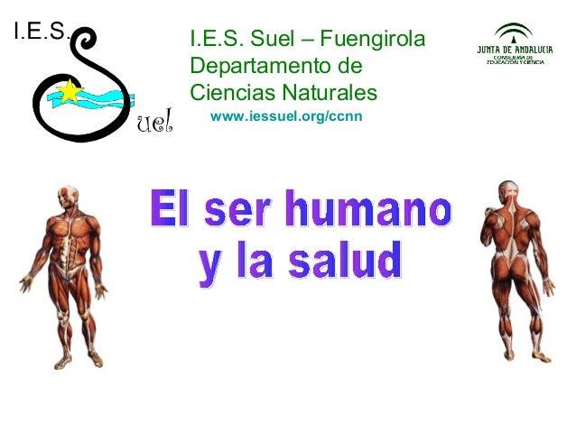 I.E.S. Suel – Fuengirola Departamento de Ciencias Naturales www.iessuel.org/ccnn