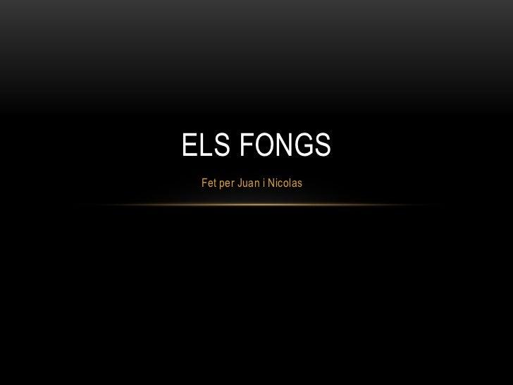 ELS FONGS Fet per Juan i Nicolas