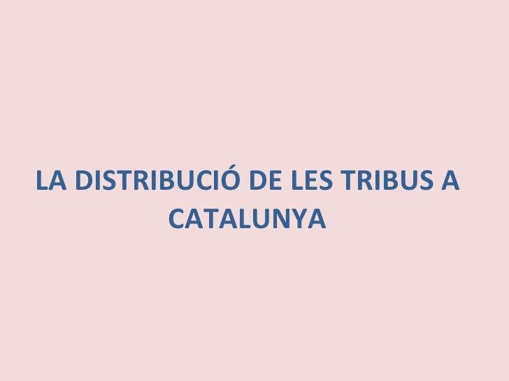 LA DISTRIBUCIÓ DE LES TRIBUS A CATALUNYA