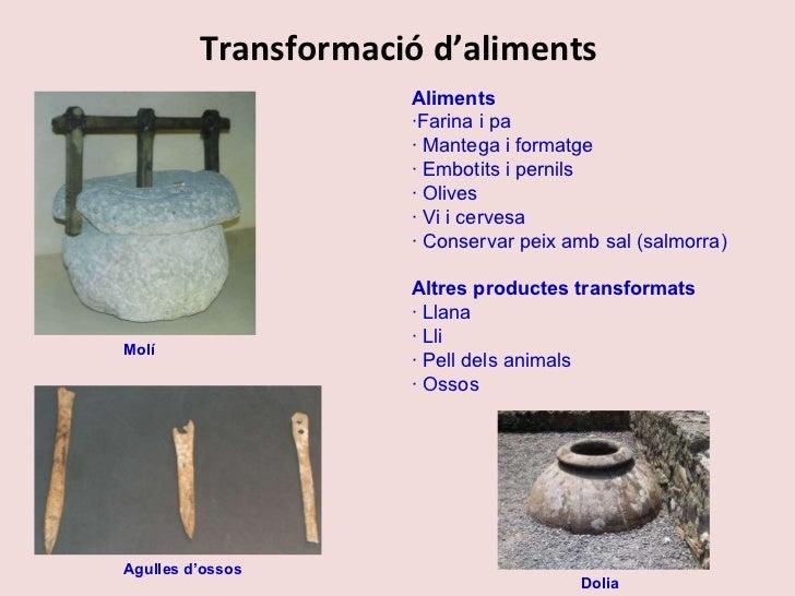 Transformació d'aliments Aliments ·Farina i pa · Mantega i formatge · Embotits i pernils · Olives · Vi i cervesa · Conserv...