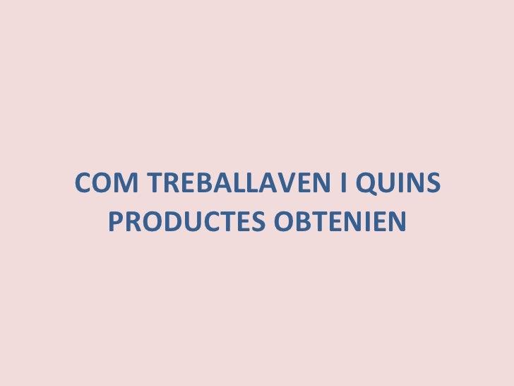 COM TREBALLAVEN I QUINS PRODUCTES OBTENIEN