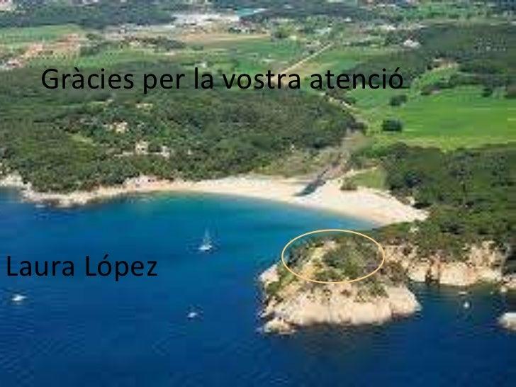 Laura López Gràcies per la vostra atenció