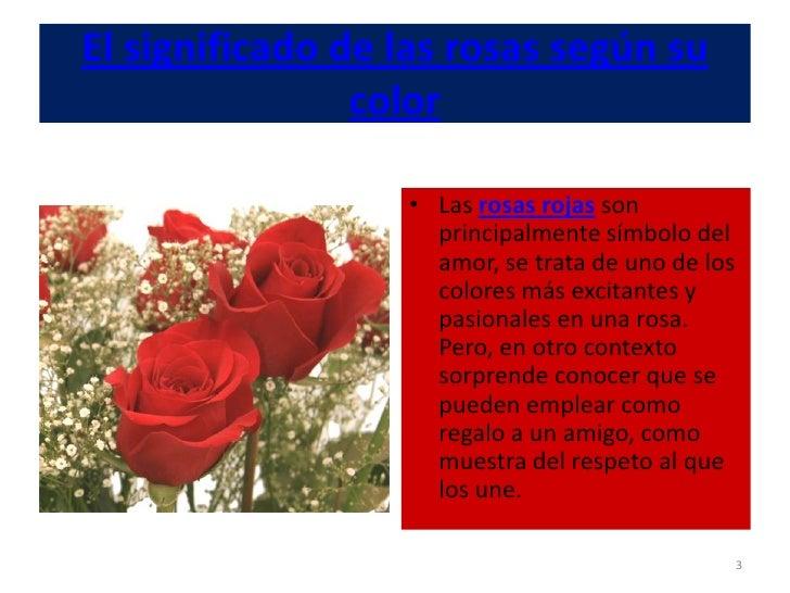 El Significado De Las Rosas Según Su Color