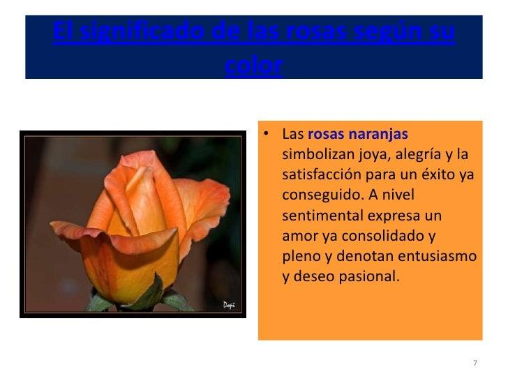 el significado de las rosas seg n su color