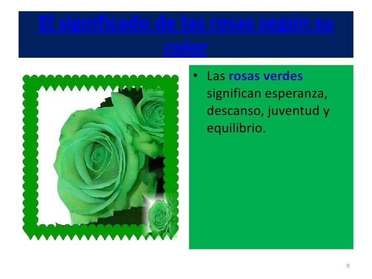 Significado De Las Rosas Segun Su Color