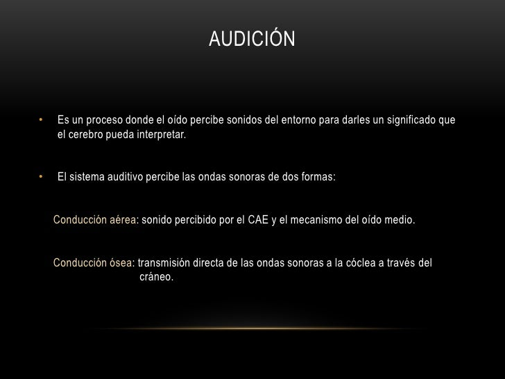 El sistema auditivo Slide 3