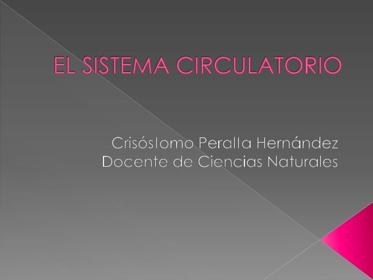 El sistema circulatorio   crisostomo peralta