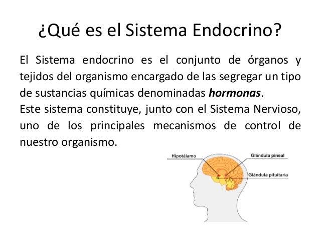 Cuadros comparativos y sinópticos sobre sistema nervioso y endocrino ...