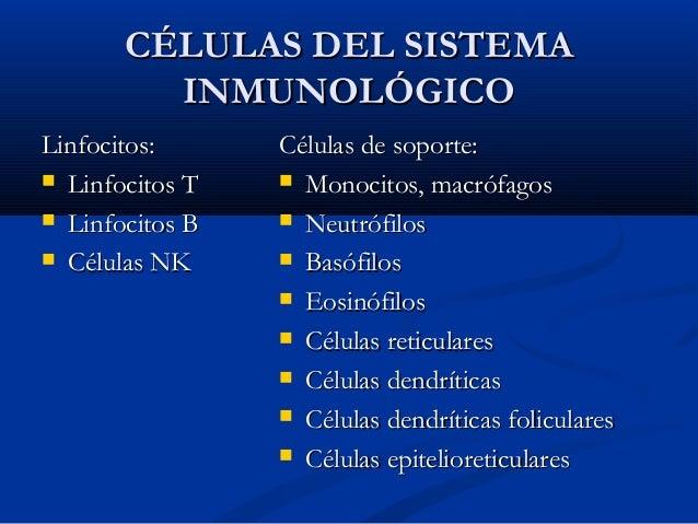 Principales funciones del sistema inmunológico