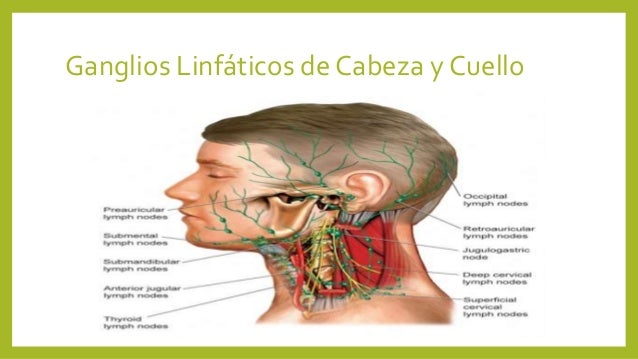 Los dolores a la espalda después del herpes
