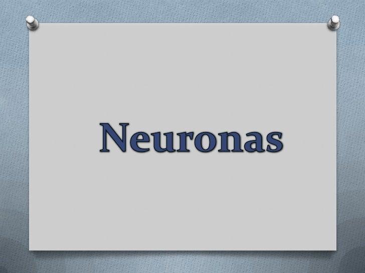 Neuronas <br />