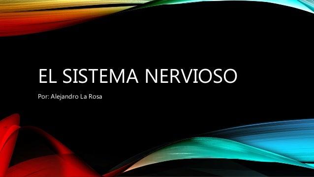 EL SISTEMA NERVIOSO Por: Alejandro La Rosa