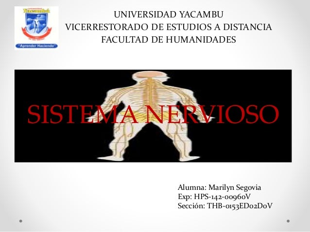 SISTEMA NERVIOSO UNIVERSIDAD YACAMBU VICERRESTORADO DE ESTUDIOS A DISTANCIA FACULTAD DE HUMANIDADES Alumna: Marilyn Segovi...