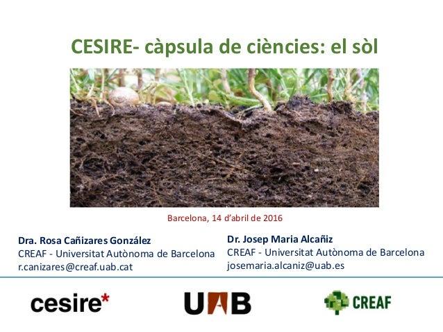 Dra. Rosa Cañizares González CREAF - Universitat Autònoma de Barcelona r.canizares@creaf.uab.cat Dr. Josep Maria Alcañiz C...