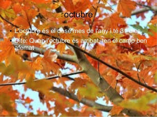 octubre ● L'octubre és el desè mes de l'any i té 31 dies. ● Dite: Quan l'octubre és arribat, ten el camp ben afemat.