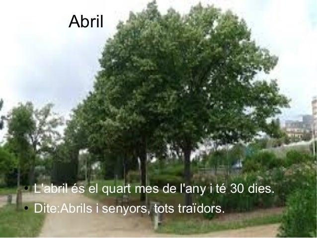 Abril ● L'abril és el quart mes de l'any i té 30 dies. ● Dite:Abrils i senyors, tots traïdors.