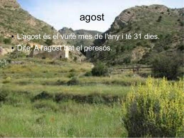 agost ● L'agost és el vuitè mes de l'any i té 31 dies. ● Dite: A l'agost bat el peresós.