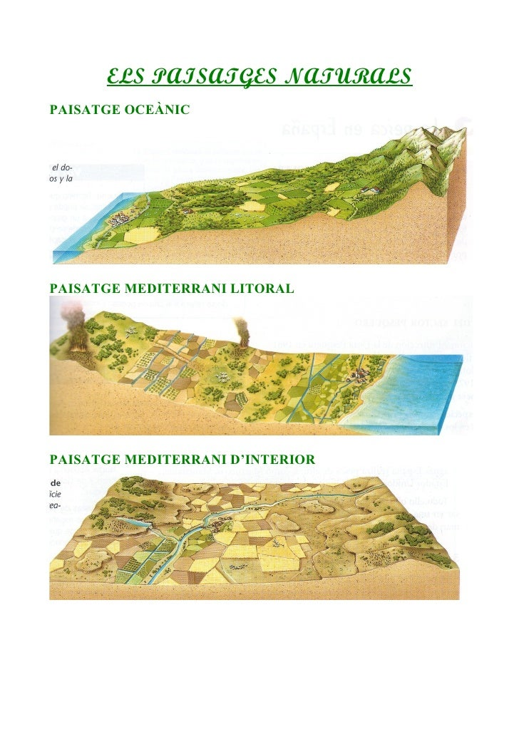 ELS PAISATGES NATURALSPAISATGE OCEÀNICPAISATGE MEDITERRANI LITORALPAISATGE MEDITERRANI D'INTERIOR