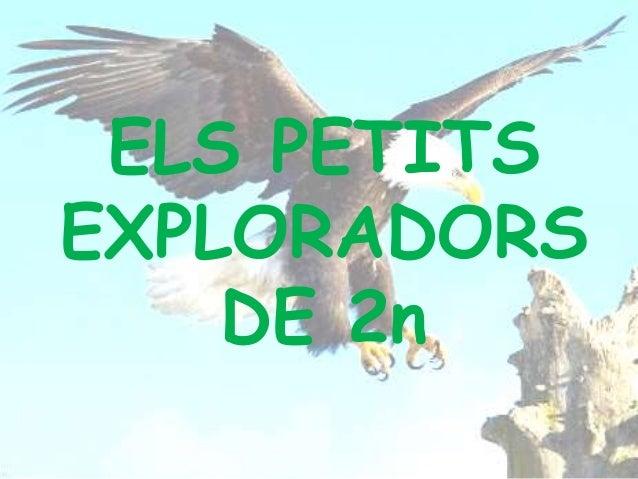ELS PETITS EXPLORADORS DE 2n