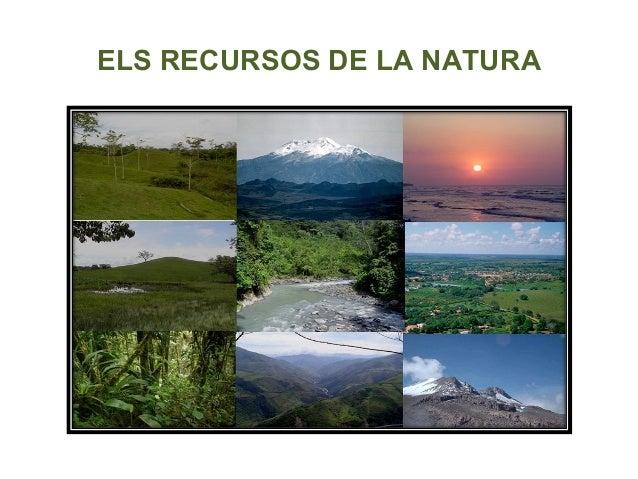 ELS RECURSOS DE LA NATURA