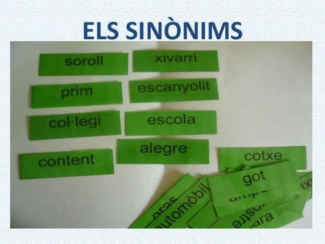 ELS SINÒNIMS