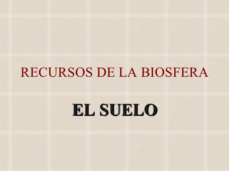 RECURSOS DE LA BIOSFERA EL SUELO