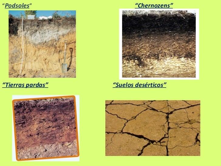 El suelo - Clases de suelo ...