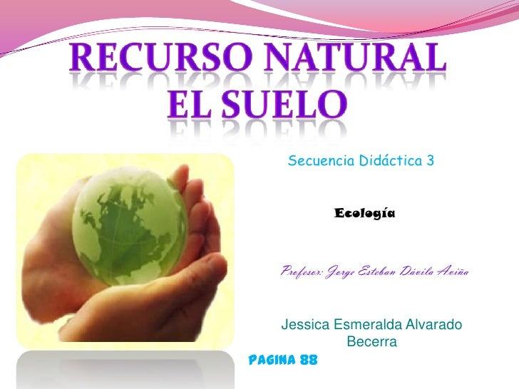 Secuencia Didáctica 3              Ecología    Profesor: Jorge Esteban Dávila Aviña    Jessica Esmeralda Alvarado         ...