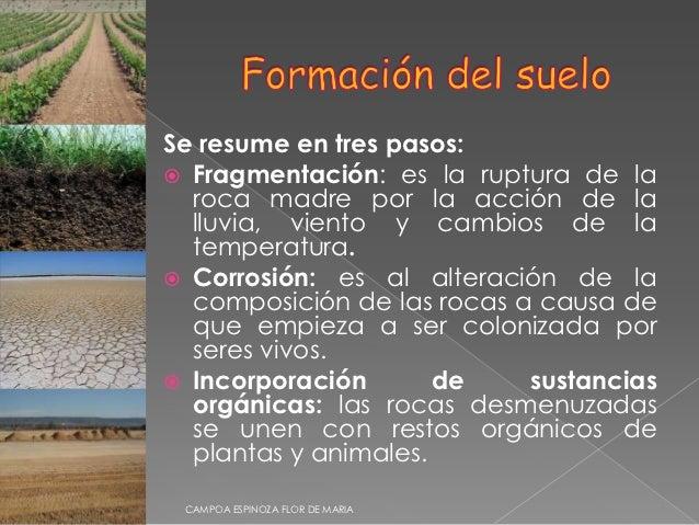 El suelo for Formacion de la roca