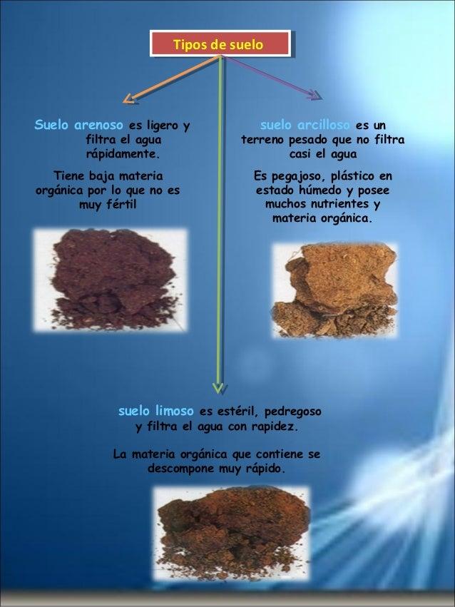 El suelo for Tipos de revestimientos para suelos