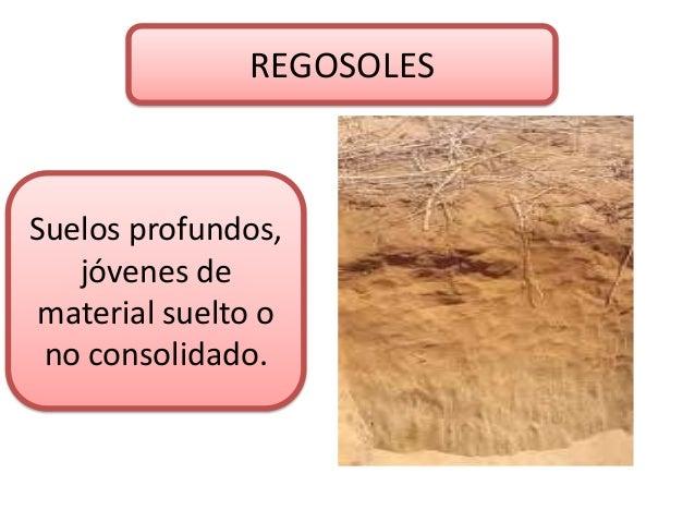 El suelo for Suelo no consolidado