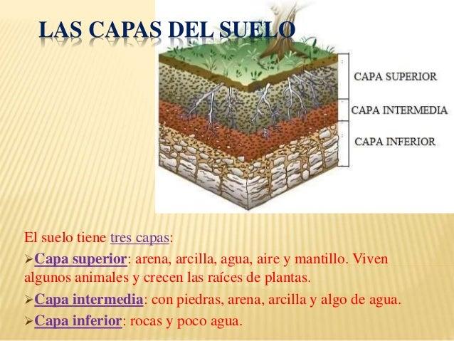 El suelo for El suelo y sus capas
