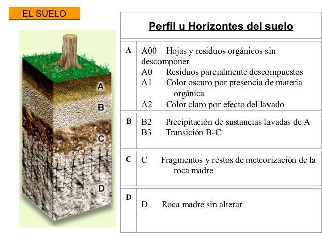 Proyectos agroindustria for El suelo y sus capas