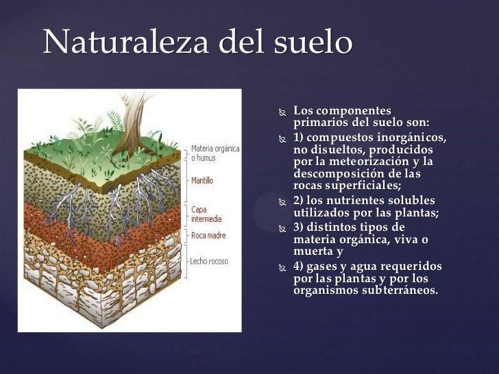 Tipos de suelo for Como esta constituido el suelo
