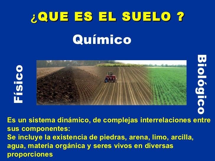 El suelo de cultivo for A que se denomina suelo