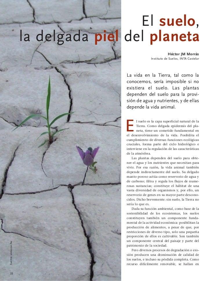 El suelo,                     la delgada piel del planeta                                                                 ...