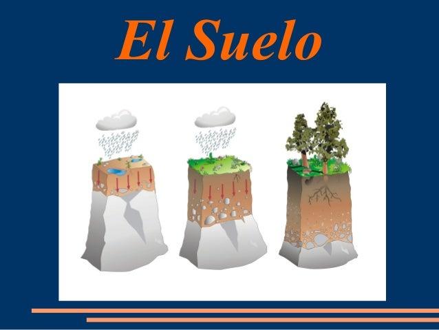 El suelo como recurso for Recurso clausula suelo