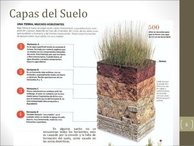 El suelo medio f sico y sustrato for El suelo y sus capas