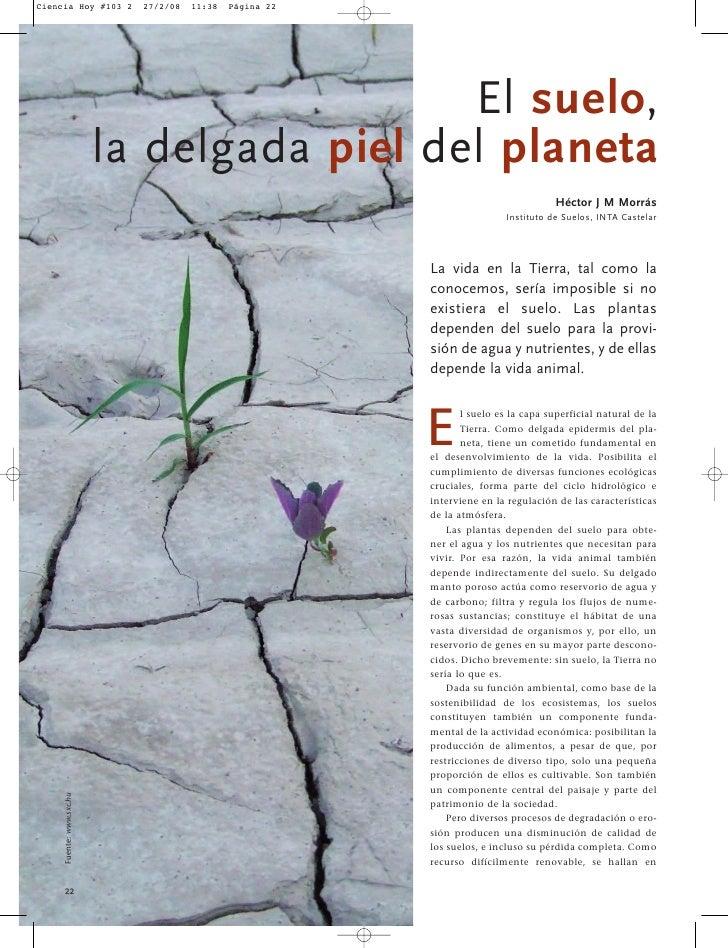 Ciencia Hoy #103 2          27/2/08   11:38   Página 22                                                 El suelo,         ...