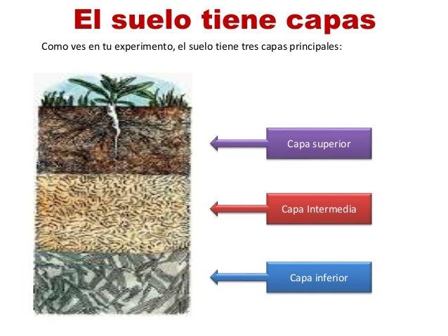 El suelo parte2 for El suelo y sus capas