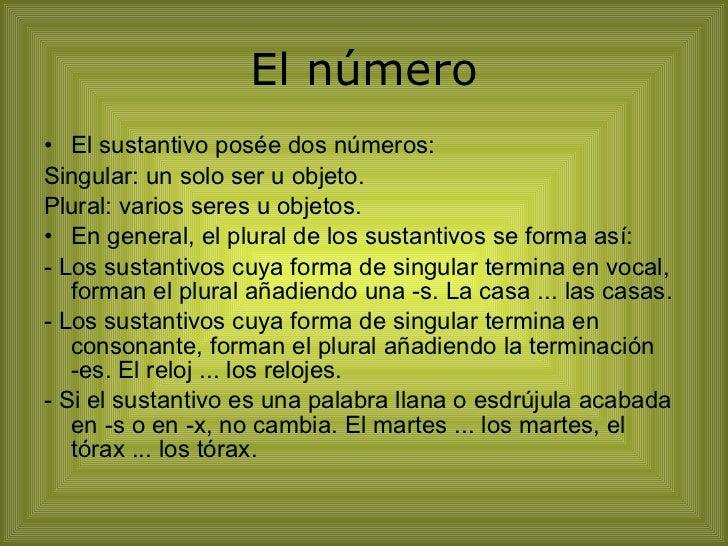 El número <ul><li>El sustantivo posée dos números: </li></ul><ul><li>Singular: un solo ser u objeto. </li></ul><ul><li>Plu...