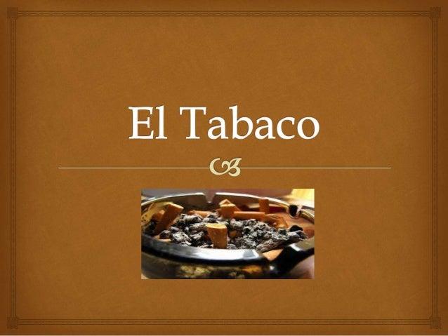 Historia     El tabaco es una hierba perenne, sus hojas secas son  trituradas y destinadas a la fabricación de los  ciga...
